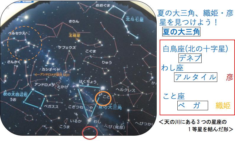ペルセウス座流星群を見よう