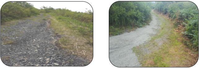大雨で決壊した物見山登山道修復